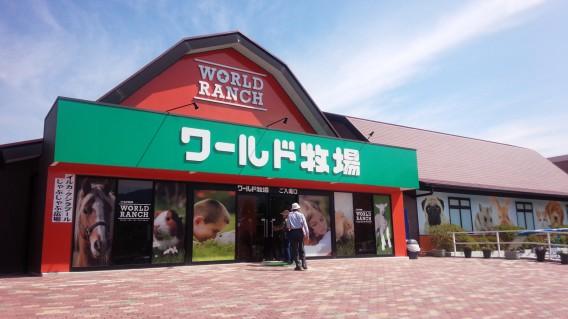 大阪府でイルカにも触れ合えて子連れに最適な穴場スポット【ワールド牧場】
